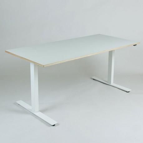 Loke hæve-/sænkebord med krydsfinér 160x80 cm