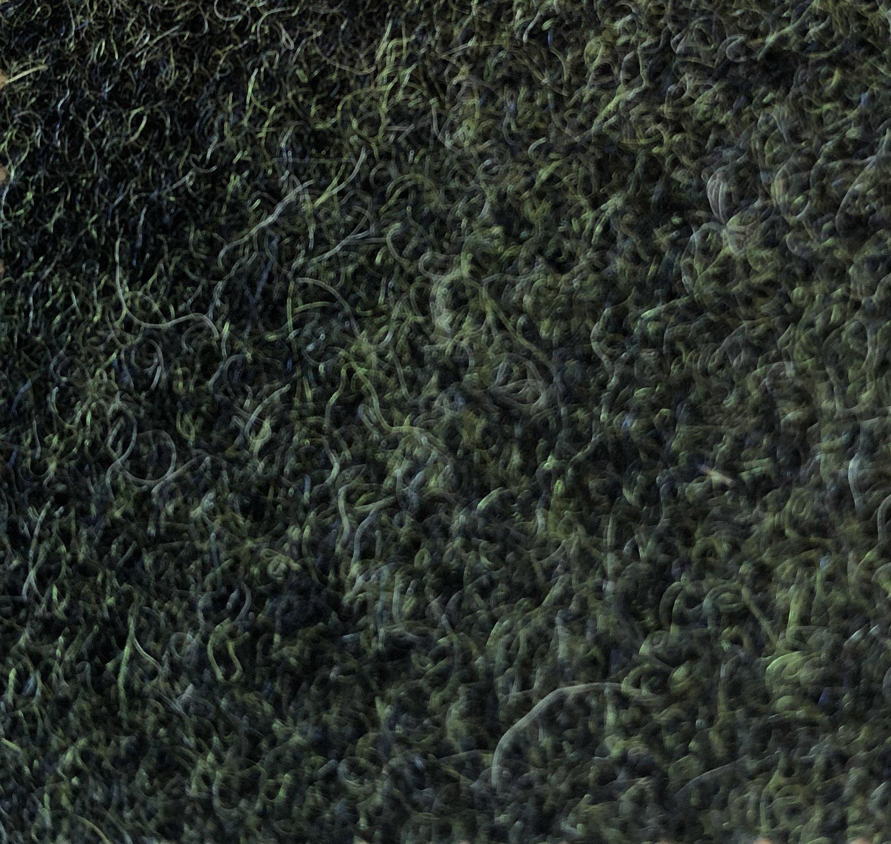 Mørkegrøn uld (G112)